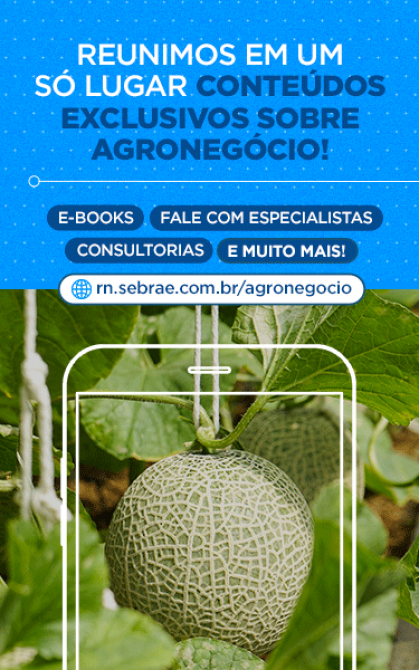Página Agronegócio